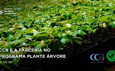 Centro de Criogenia Brasil firma parceria com o programa Plante Árvore