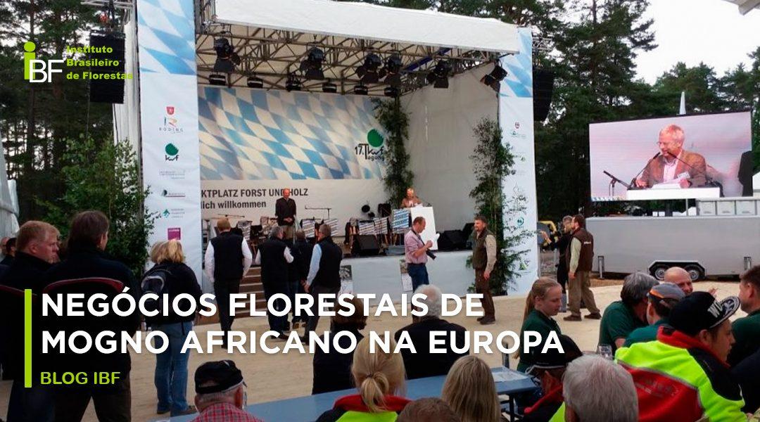 negócios florestais