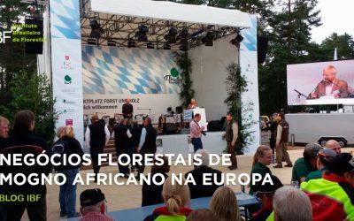 Apresentação de negócios florestais de Mogno Africano na Europa