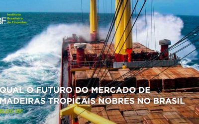 Qual o Futuro do Mercado de Madeiras Tropicais Nobres no Brasil