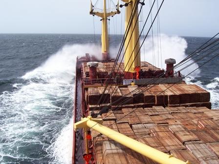 transporte de madeira tropical