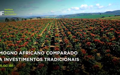 Mogno Africano comparado a investimentos tradicionais