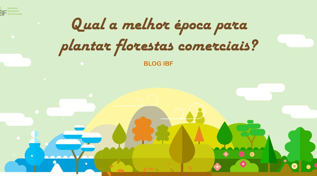 Qual a melhor época para plantar florestas comerciais