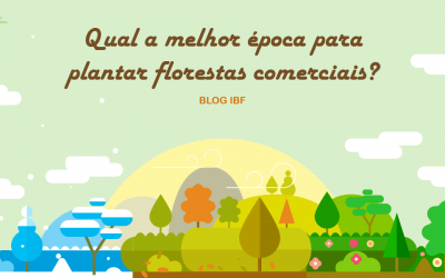 Qual a melhor época para plantar florestas comerciais?