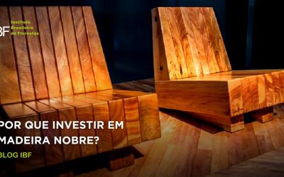 Por que investir em madeira nobre?