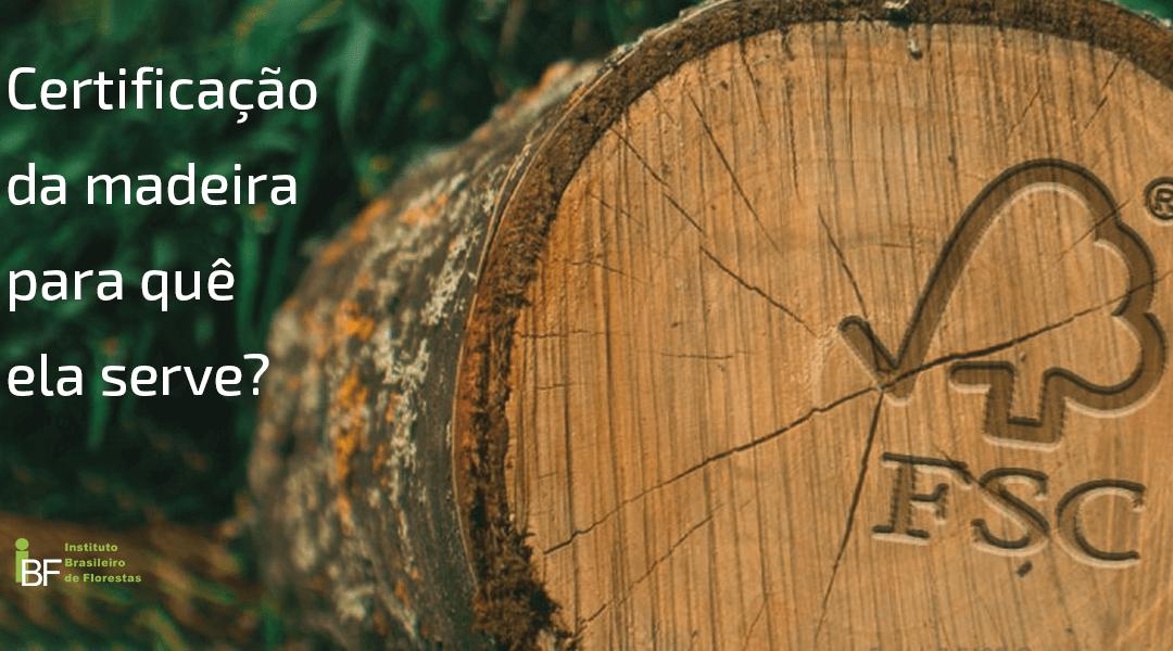 Certificação da madeira, para quê ela serve