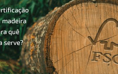 Certificação da madeira, para quê ela serve?