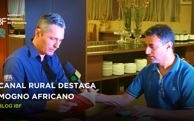 Canal Rural destaca Mogno Africano: entrevista com Solano Aquino