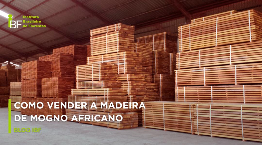 vender madeira de Mogno Africano