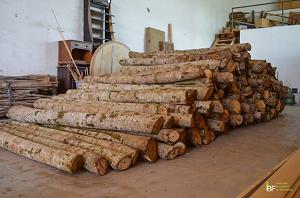 venda madeira exotica mogno africano