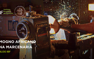 Como é trabalhar com a madeira de Mogno Africano na marcenaria?