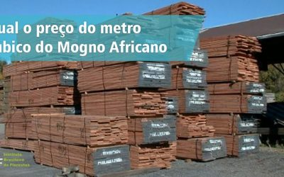 Preço do metro cúbico do mogno africano