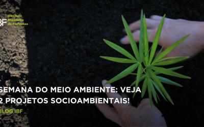 Semana do Meio Ambiente: conheça 2 projetos socioambientais!
