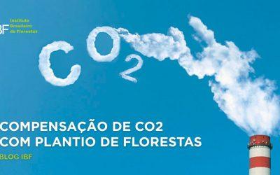 Compensação de CO2 com Plantio de Florestas