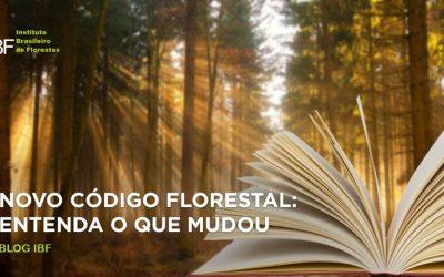 Novo Código Florestal: entenda o que mudou
