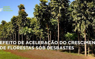 Aceleração do crescimento em florestas desbastadas