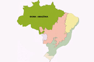 Mapa bioma da Amazônia