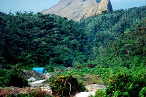 relevo da amazônia
